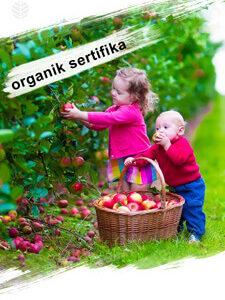# organik