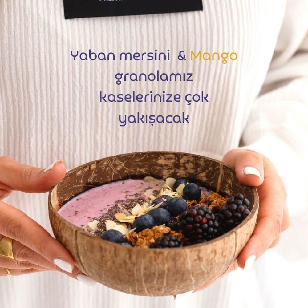 glutensiz-granola-yaban-mersini-mango-4-naturiga