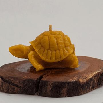 dogal-balmumu-mum-kaplumbaga-4-yazla